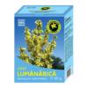 lumanarica1043